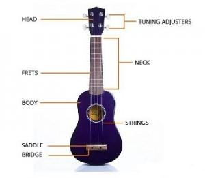 20150714-nhung-dieu-thu-vi-khi-hoc-ukulele-2