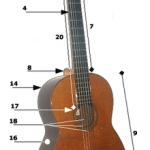 Cấu tạo của guiltar cổ điển và guitar điện