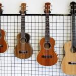 Nên chọn lựa đàn Ukulele nào cho người mới chơi đàn Ukulele?