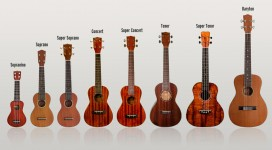 dan-ukulele