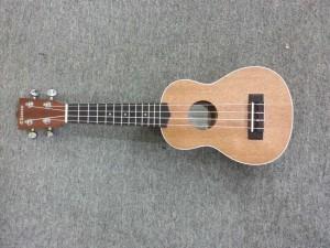 dan-ukulele-chateau