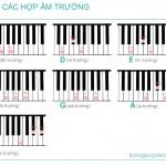 14 hợp âm cơ bản, đủ dùng trên Piano