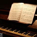 Bước khởi đầu hoàn hảo để học đánh đàn Piano