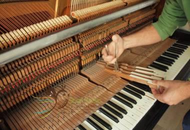 6 bước trong quá trình chơi nhạc