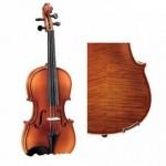 Lựa chọn Violin tâm đắc