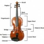 Cấu tạo và âm sắc của đàn vĩ cầm (Violin)