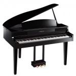 So sánh đàn Piano điện và đàn Organ Piano