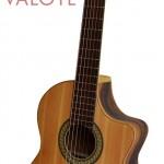 Nên học đàn Guitar Acoustic hay Guitar Classic?