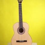 Chọn đàn Guitar Accoustic cho người mới