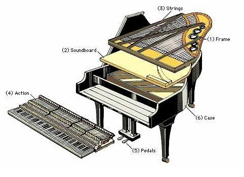 Cau-truc-piano-acoustic