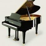 Các bước phát triển Piano
