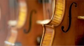 Hoc Violin de hay kho