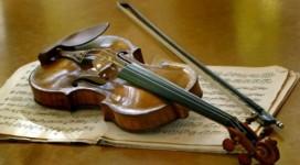 Cay_vi_cam_Stradivarius